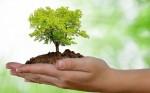 Curso Educação Ambiental e Sustentabilidade / 40 horas